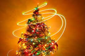 100 wyckoff christmas tree farm mystree sleeveless cami