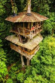 finca bellavista treehouse community treehouse tree houses and acre