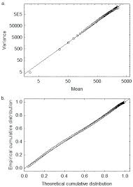 computation free full text a scale invariant distribution of