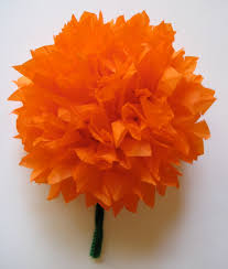 mexican paper marigolds for