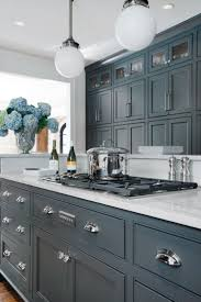 Kitchen Cabinet Stainless Steel Grey Kitchen Cabinets With Black Countertops Finest Inspiration