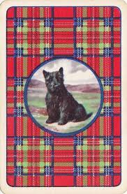193 best scottie cards cigarette and images on