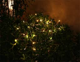 solar string lights a touch of green illumination your solar