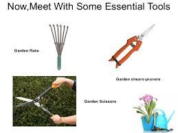 Garden Rake Types - download tools for a garden solidaria garden