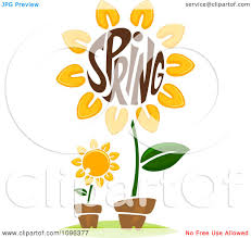 clipart the word spring in a sunflower center royalty free
