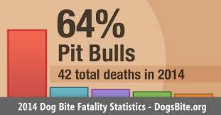 australian shepherd kills child 2014 u s dog bite fatalities dog bite statistics dogsbite org