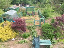 permaculture garden layout permaculture pollinators herbs u0026 afternoon tea u2026 2 5pm may 26th