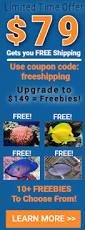 best black friday deals saltwater supplies aquarium supplies buy aquarium supplies u0026 salt water fish