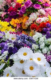 plastic flowers plastic flowers stock photos plastic flowers stock