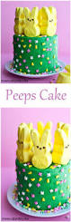 Easter Cakes Decorated With Peeps by Best 25 Peeps Ideas On Pinterest Easter Stuff Easter Holidays