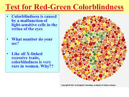 What Causes Red Green Color Blindness Mendelian Genetics U0026 Inheritance Notes Genetic Terms L Phenotype