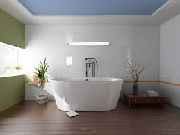 Modern Lighting Bathroom Ideas Soaking Tubs With Waterstone Faucets And Interior Potted