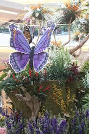 southern california spring garden show home design and