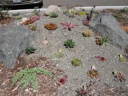 hortitorture industry backwardness the desert northwest blog