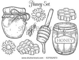 bee drawing stock images royalty free images u0026 vectors shutterstock
