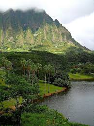 Oahu Botanical Garden by 1579 Best Oahu Images On Pinterest Hawaii Travel Hawaii Life