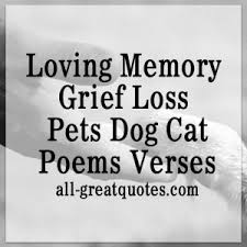grieving loss of pet in loving memory pets greeting cards