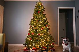 Easy Assemble Christmas Trees The Best Artificial Christmas Tree Of 2018 Your Best Digs