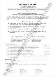 Best Resume Overview by Resume Summary Generator Free Resume Example And Writing Download