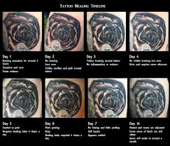tattoo healing timeline tattoo collections