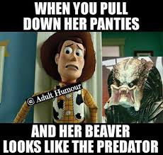 Panties Meme - when you pull down her panties adult meme