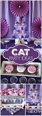 Husband Birthday Decoration Ideas At Home Best 25 Cat Party Ideas On Pinterest Kitty Party Cat Birthday