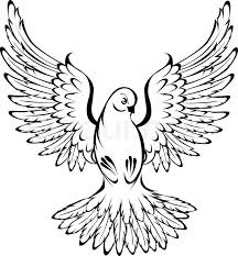 arts of painted flying dove outline on a white background
