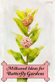 148 best garden inspiration images on pinterest flower gardening