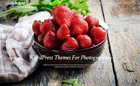 20 best themes for photographers 2017 colorlib