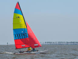 racing the storm the story of the mobile bay sailing disaster
