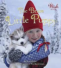 christmas wish book the christmas wish lori evert per breiehagen 9780449816813