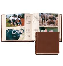 photo albums with memo area shelbourne medium memo photo album exposures online