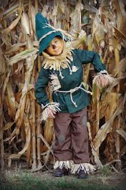 wizard of oz costume homemade best 20 scarecrow wizard of oz ideas on pinterest clueless