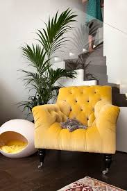 Velvet Armchair Sale Best 25 Yellow Armchair Ideas On Pinterest Yellow Chairs
