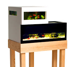 accessories attractive contemporary fish tanks for