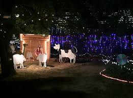 Christmas Lights Ditto Canberra U0027s Best Christmas Lights The Riotact