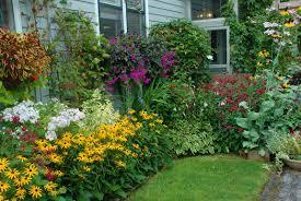 cottage garden ideas if you like flowers gardening layout garden