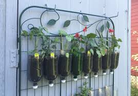 Vertical Gardening by How To Build A Diy Vertical Garden Sarah Lawrence