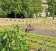 chambre agriculture avignon week ends et séjour bio en provence avignon et provence
