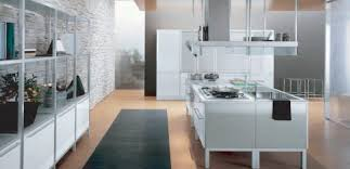 steel kitchen cabinets u2013 a sleek design that has transitioned from