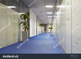 office corridor palm trees pots carpeting stock photo 66035428
