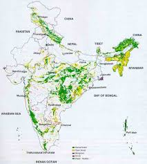 India Geography Map by Forest Area Of India Geographical Distribution Of Forest Area Of