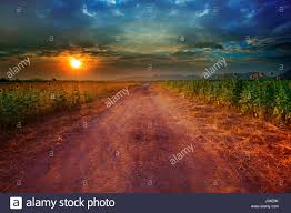 farm dusty road agriculture stock photos u0026 farm dusty road