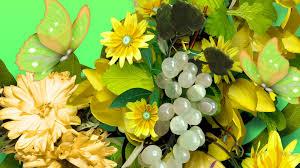 flowers yellow flowers butterflies autumn butterfly grapes summer