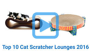 Cat Scratcher Top 10 Cat Scratcher Lounges Of 2016 Video Review