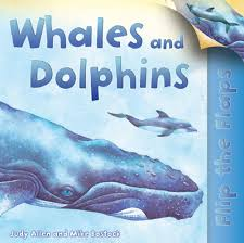flip the flaps whales and dolphins judy allen macmillan