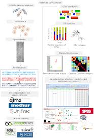 Ijms Free Full Text Meta Omic Platforms To Assist In The