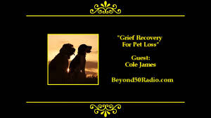 grieving loss of pet grief recovery for pet loss