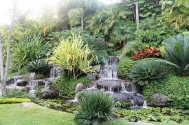 how to design a small tropical garden margarite gardens