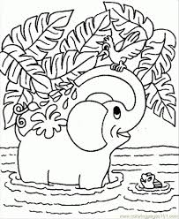 the most incredible cute elephant coloring pages intended for home